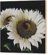 Creamy Sunflowers Wood Print