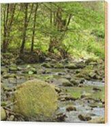 Creek 3 Wood Print