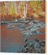 Creek 5  Wood Print