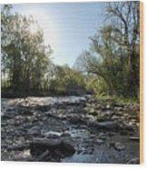 Creek And Bridge Wood Print