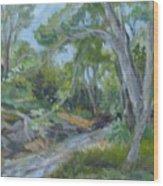 Creek At Linn Haven Wood Print