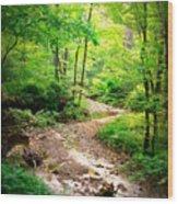 Creek Bend Wood Print