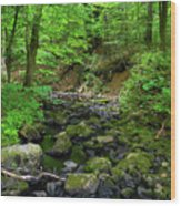 Creek Crossing In Ma Wood Print