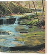 Creek In Dappled Light At Don Robinson State Park 1 Wood Print