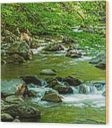 Creek In Great Smoky Mountains National Wood Print