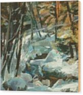 Creek In The Cold Wood Print
