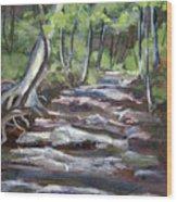 Creek In The Park Wood Print
