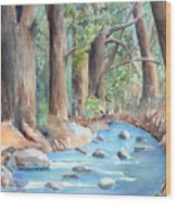 Creek In The Woods Wood Print
