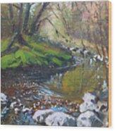 Creek In The Woods Wood Print by Ylli Haruni