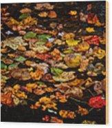 Creek Leaves Wood Print