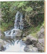 Creek On Kalalaua Trail Wood Print