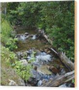 Creek On Mt. Spokane 1 Wood Print