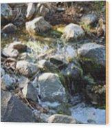 Creek Reflections 1 Wood Print