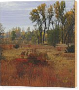 Creek Valley Beauty Wood Print