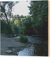 Creekbed Wood Print