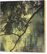 Creekside Color 2 Wood Print