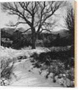 Creekside Winter Wood Print