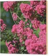 Crepe Myrtle Blossoms 2 Wood Print