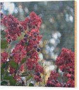 Crepe Myrtle Tree Blossoms Wood Print