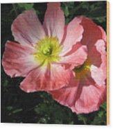Crepe Paperflowers Wood Print