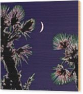 Crescent And Palms Wood Print