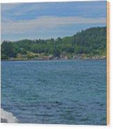 Crescent Beach Center Panoramic Wood Print