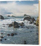 Crescent City Shoreline Wood Print