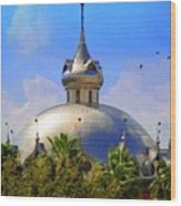 Crescent Of The Dome Wood Print