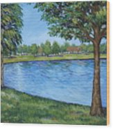 Crest Lake Park Wood Print