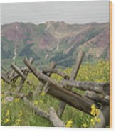 Crested Butte Color Wood Print