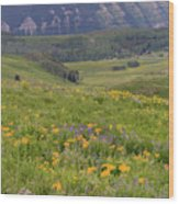 Crested Butte Valley Wood Print