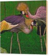 Crested Cranes Wood Print