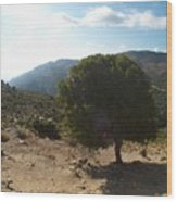 Crete Inland View Wood Print