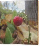 Crimson Berry Wood Print