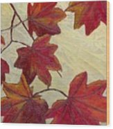 Crimson Branch Wood Print