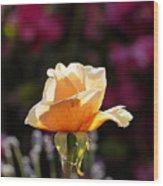 Crimson Gold Lavender Wood Print