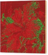 Crimson Hibiscus Wood Print