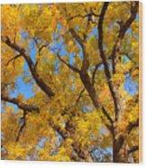Crisp Autumn Day Wood Print
