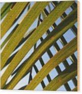 Criss Cross Wood Print