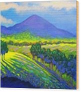 Croagh Patrick County Mayo Wood Print
