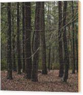Croatan Wood Print