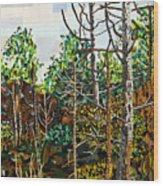 Croatan Forest 1 Wood Print