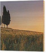 Croce Di Prata Wood Print