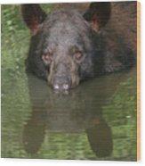 Crocodile Wannabe Wood Print
