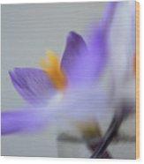 Crocus In Vase 8 Wood Print