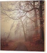 Crooked Path Wood Print