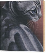 Cropped Cat 1 Wood Print by Carol Wilson