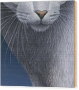 Cropped Cat 5 Wood Print by Carol Wilson