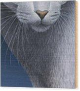 Cropped Cat 5 Wood Print
