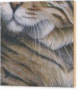 Cropped Cat 6 Wood Print
